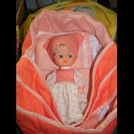 Doll in Cradle